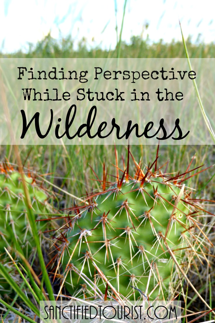 This trouble seems to go on and on. You are still waiting and waiting and waiting...and waiting. Wilderness hopelessness is a favorite lie of the enemy. Here is some perspective for you.
